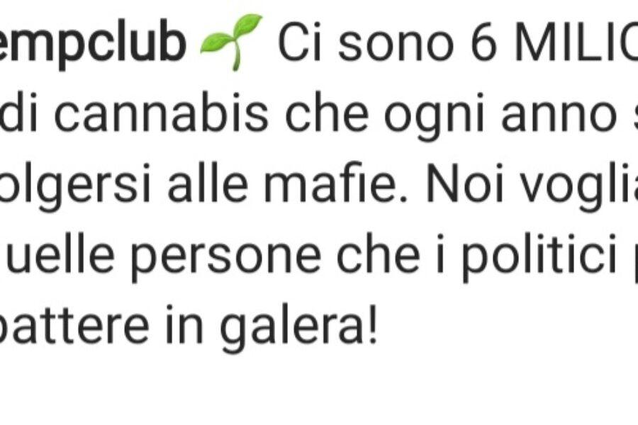 """Ornella Muti e la figlia Naike Rivelli, produrranno PRODOTTI  con la CANNABIS: """"Ornella Weed""""."""
